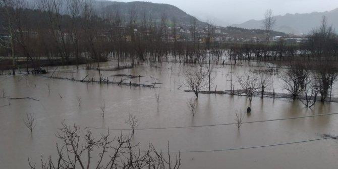 Sel sularının etkili olduğu bölgede 5 ev tahliye edildi